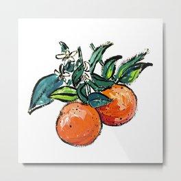 Oranges and Orange Blossom California Citrus Pattern Painting on White Metal Print