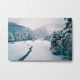 Snowfall in the italian alps Metal Print