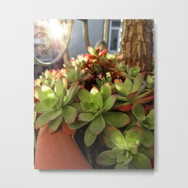 Fat Plant Flowers Metal Print