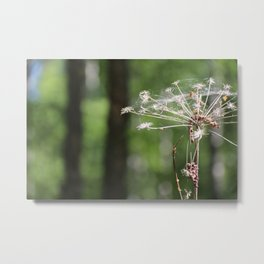 Angelica and forest Metal Print