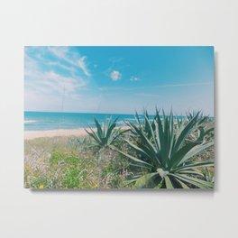 Flagler Beach, Florida Metal Print