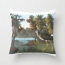 Yellow shank, Birds of America, Audubon Plate 288 Throw Pillow