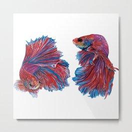 Ocean Theme- Red Blue Betta fish Watercolor Painting Metal Print
