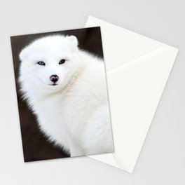 Arctic Fox Stationery Cards