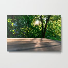 Sunset behind the trees Metal Print
