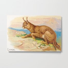 Lynx from the Quadrupeds series for A&G 1890 // Colorful Animal Painting Detailed Dots Metal Print