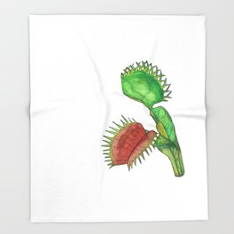 Venus Fly Trap - Dionaea, a carnivorous plant Throw Blanket