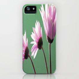 Rose  Gerbera Daisy iPhone Case