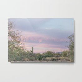 pink skies in Arizona Metal Print