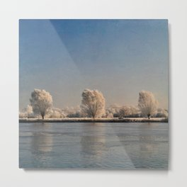 Frozen Landscape. Metal Print