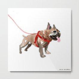 watercolor dog vo5  french bulldog Metal Print