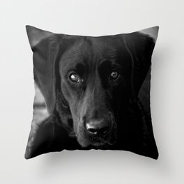 Loyalty  Black Lab  Throw Pillow