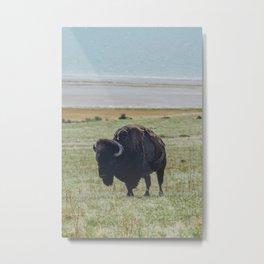 Antelope Island, Utah Metal Print