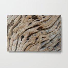 Close-up view rough texture of tree trunk Metal Print Metal Print