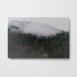Forest Fog IV Metal Print