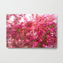 Flowering Tree in Spring, Floral Pink Effusion Art Photography Metal Print