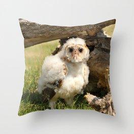 Cotton Owl Throw Pillow