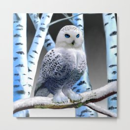 Blue-eyed Snow Owl Metal Print