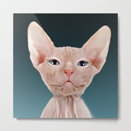 Sphynx Kitten II Metal Print