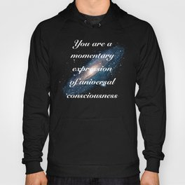 Momentary Expression of Universal Consciousness Hoody