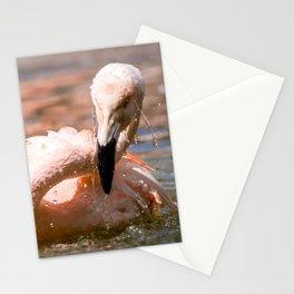 #Flamingo a #big #bird #loves to #swim Stationery Cards