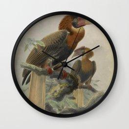 Rufous Hornbill Rufous3 Wall Clock