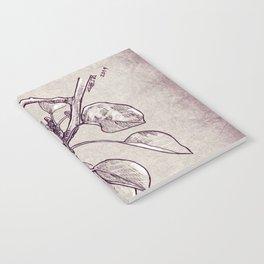 Pear tree Notebook