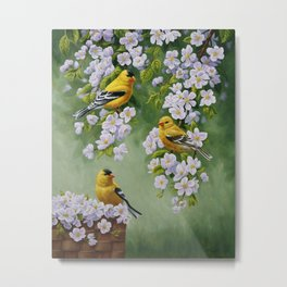 Goldfinches and Spring Apple Blossoms Metal Print
