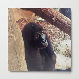 SmartMix Animal-Gorilla Metal Print