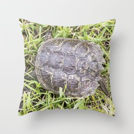 Snapping Turtle 3 Throw Pillow