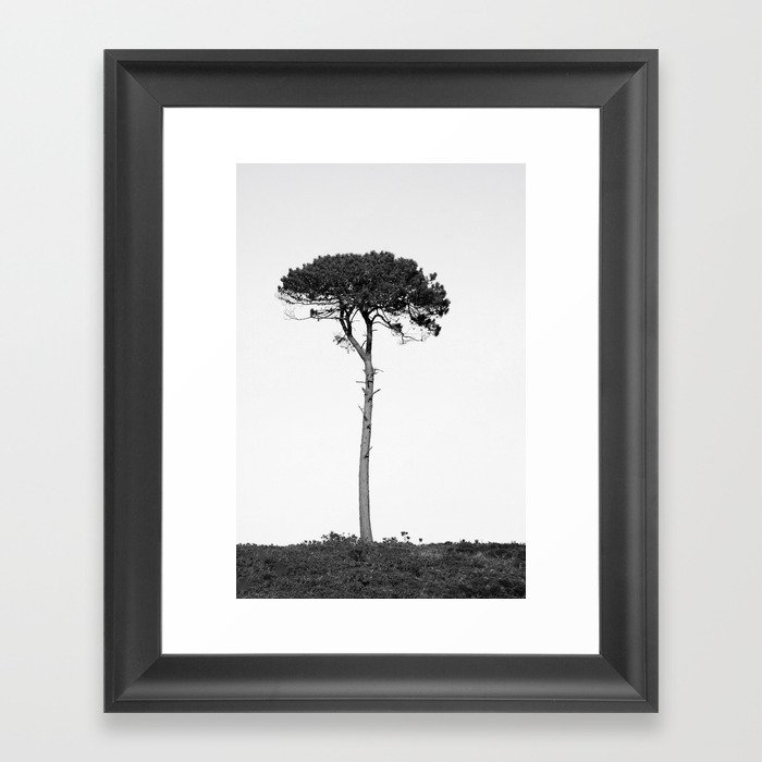nature in black and white framed art print by annestaub society6 nature in black and white framed art print by annestaub