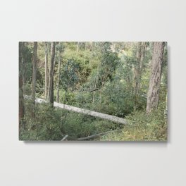 Suspension Bridge Over Canyon Metal Print