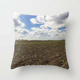 Corn Field 2 Throw Pillow