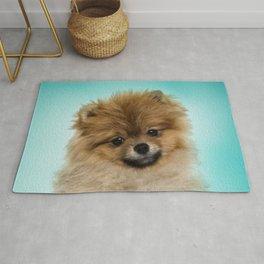 Cute Pomeranian Dog Rug