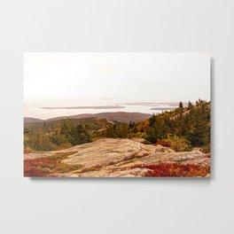 Autumn in Acadia III Metal Print