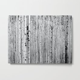 Aspen Tree Maze Metal Print
