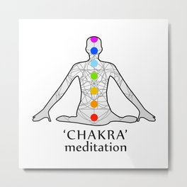 The seven chakras with their names Metal Print