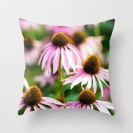 Echinacea In Bloom Throw Pillow