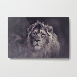 Purple Hazy Lion (Color) Metal Print