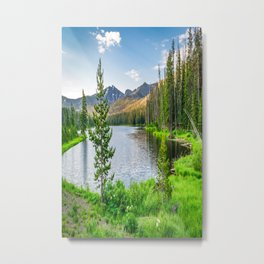 Yellowstone Sylvan Lake Landscape Print Metal Print