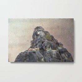 Externsteine top of the rock Metal Print