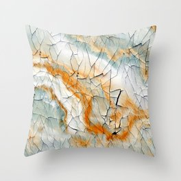 Dry Up A Throw Pillow