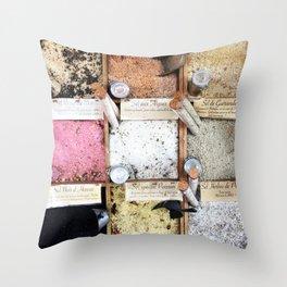 Foodie salts, Nice France Throw Pillow