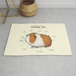 Anatomy of a Guinea Pig Rug