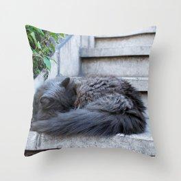 Ash Cat. Throw Pillow