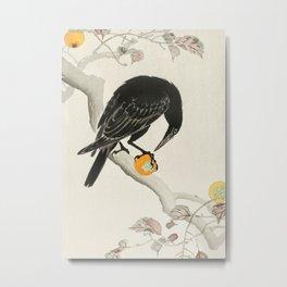 Crow eating persimmon Fruit - Vintage Japanese Woodblock Print Art Metal Print