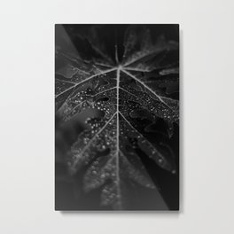 black and white macro Metal Print