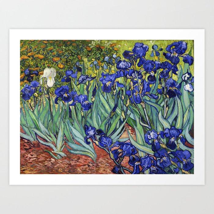 Irises by Vincent van Gogh Kunstdrucke