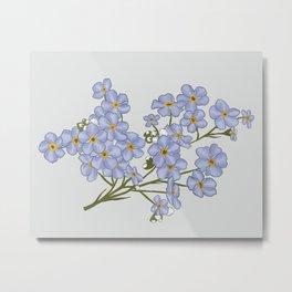 Little Blue Flowers Illustration / Forget Me Nots Metal Print