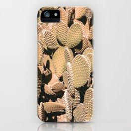 Cactus Maximalism // Vintage Bohemian Desert Photography Home Decor Summer Vibes iPhone Case